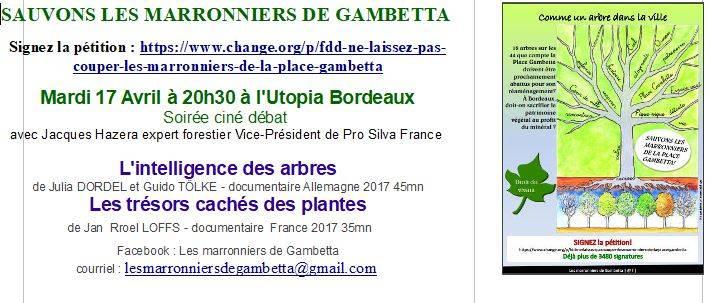 Collectif Sauvons Les Marronniers De La Place Gambetta