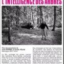 Soirée Ciné Débat Le 17 Avril 20h30 à L'Utopia Sauvons Les Arbres