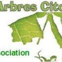 PourQuoiPas Une Association Aux Arbres Citoyens
